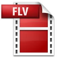 *Video:video file